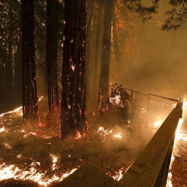 Los feroces vientos de California se alivian después de avivar incendios forestales, derribar árboles y voltear grandes camiones