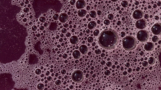 El fabricante de jugos del estado de Washington cerró por un juez federal por toxinas